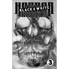 HORROR COMICS BLACK AND WHITE #3 (OF 3) (02/24/2021)
